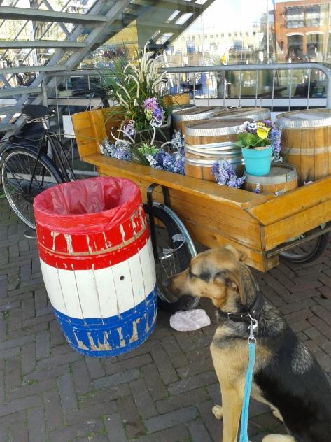 Cargobike herring