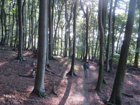 Hiking6